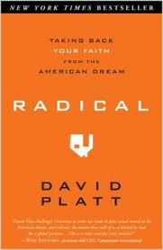 radical-book-cover