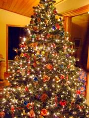 med bright tree 5596-2