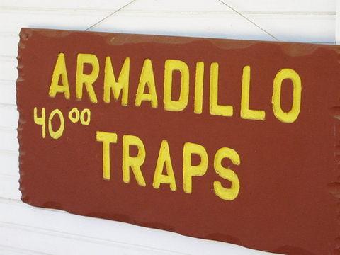 Armadillo traps sign