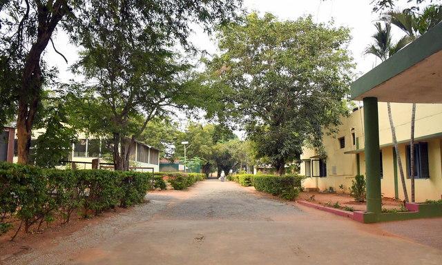 TENT-Carmel-Hyderabad-India_LAH_0429