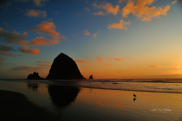 CannonBeach_2573x_fsp