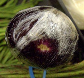 Eggplant_LAH_0536